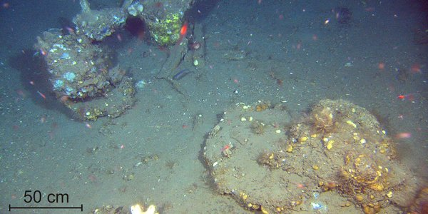 Large areas of carbonate crust found at pockmarked seafloor off mid Norway